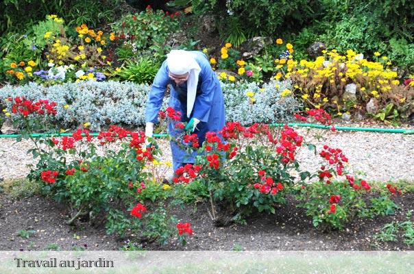 Travail de jardinage