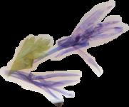 fleur monastere